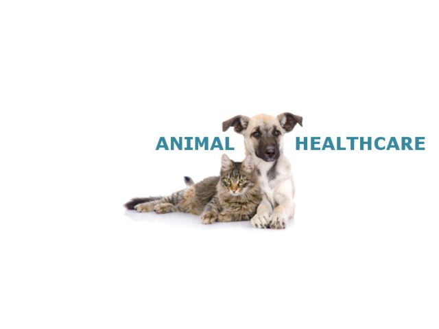 ANIMAL HEALTHCARE