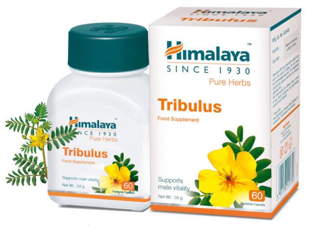 Tribulus kapsule